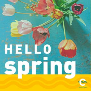 🌷🌱ᒪEᑎTEKᖇIEᗷEᒪᔕ 🌸💚  #themostbeautifultimeoftheyear  #lenteweer #lentegevoel